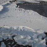 Schollentreiben an der Ostsee