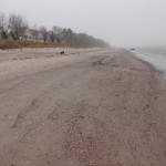 Strand Lubmin im Herbst